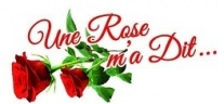 gallery/logo Rose